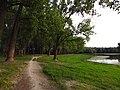 Dunavac - panoramio (9).jpg