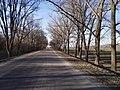E584, Moldova - panoramio (11).jpg