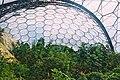 Eden Project 7 March 2005 Cornwall bg (278528361).jpg