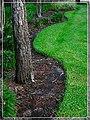 Edge - Flickr - pinemikey.jpg
