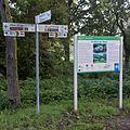 Elberadweg in Dessau.jpg