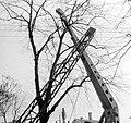 Elektrifizierung in Thüringen in den 1950er Jahren 108.jpg
