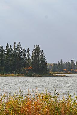 Sø i Elk Island National Park