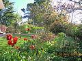 ElmAgos garden in Friuli Italy.JPG