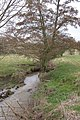 Elmbridge Brook, Elmbridge - geograph.org.uk - 136427.jpg