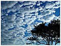 Endless Clouds - Flickr - pinemikey.jpg