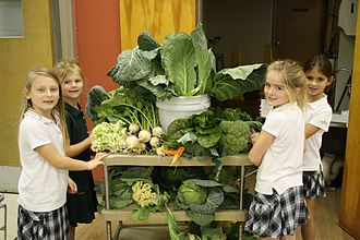 Savannah Country Day School - Students with vegetables from the organic garden