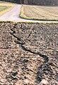 Erosion Rillen017.jpg