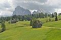 Erratischer Dolomit-Block Cionstoan Seiseralm 2017 2.jpg