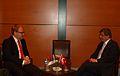 Estonian FM Urmas Paet and Turkish FM Ahmet Davutoglu in istanbul.jpg