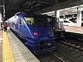 Express trains at Hakata Station 20201009-2.jpg