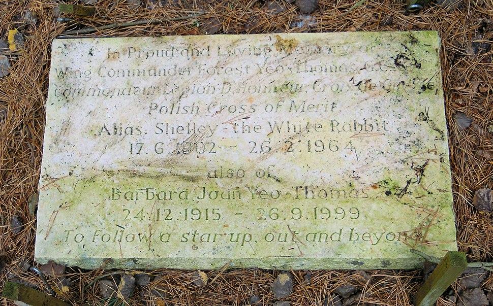 F. F. E. Yeo-Thomas Grave Brookwood