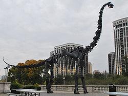 ブラキオサウルス ブラキオサウルスとは