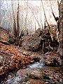 Fall in Qalat پاییز قلات - panoramio.jpg