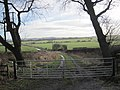 Farm track leading to the River Don - geograph.org.uk - 1717998.jpg