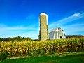 Farm with a Silo - panoramio (11).jpg