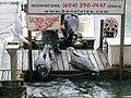 Feeding seals on the dock (8385459648).jpg