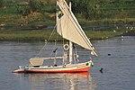 Felukenboot mit der Seteesegel auf dem Nil..74a0 -1-origWI.jpg