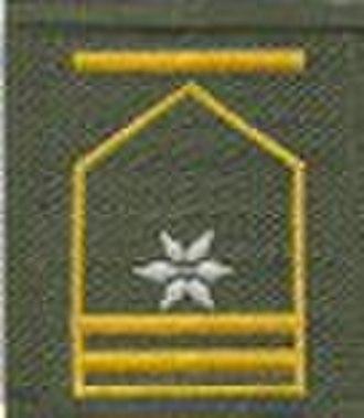 Unterleutnant - Image: Fhr Anzug 75 03 AT