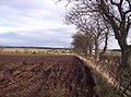 Field, Trees and Caldcots Farm - geograph.org.uk - 112067.jpg