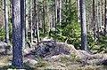 Finland - panoramio (22).jpg