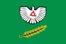 Flag of Nazran (Ingushetia).png
