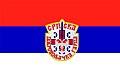 Flag of the Serbian Volunteer Guard.jpg