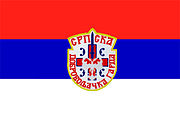 Flag of the Serbian Volunteer Guard.jpg