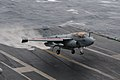 Flickr - Official U.S. Navy Imagery - Prowler assigned to Electronic Attack Squadron 134 lands aboard carrier..jpg