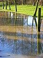 Floodwater, Cropredy - geograph.org.uk - 662760.jpg