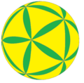 Flower of life on spherical dodecahedron.png