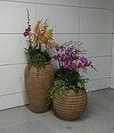 Flower pot at Airport N. Station in Guangzhou Metro 1.jpg