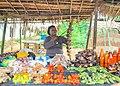 Foodstuff Trader 01.jpg