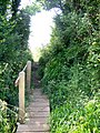Footbridge near Sompting - geograph.org.uk - 1336434.jpg