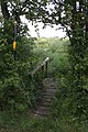 Footbridge on Footpath to St Mary-In-The-Marsh - geograph.org.uk - 459120.jpg