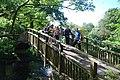 Footbridge over the River Avon - geograph.org.uk - 1557601.jpg