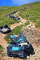 Footpath Repairs, Allencrags Gill - geograph.org.uk - 917309.jpg
