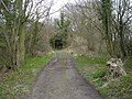Footpath along Benthall Edge - geograph.org.uk - 739760.jpg