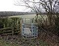 Footpath gate, Calcutt Spinney - geograph.org.uk - 1114220.jpg