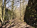Footpath in a man-made canyon, Southowram - geograph.org.uk - 397896.jpg