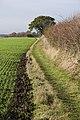 Footpath near Hunston Green - geograph.org.uk - 1586066.jpg