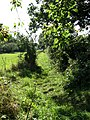 Footpath to Brumstead Common - geograph.org.uk - 564335.jpg