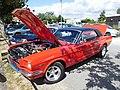 Ford Mustang, 289 ci (2).jpg