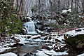 Forest-waterfall-winter-snow-scene1 - West Virginia - ForestWander.jpg