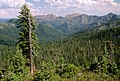 Forest and Mountains, Rogue River-Siskiyou National Forest (36714154250).jpg