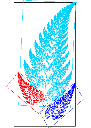 Affine transformation - An image of a fern-like fractal that exhibits affine self-similarity. Each of the leaves of the fern is related to each other leaf by an affine transformation. For instance, the red leaf can be transformed into both the small dark blue leaf and the large light blue leaf by a combination of reflection, rotation, scaling, and translation.