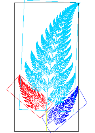 Affine transformation - An image of a fern-like fractal that exhibits affine self-similarity. Each of the leaves of the fern is related to each other leaf by an affine transformation. For instance, the red leaf can be transformed into both the dark blue leaf and the light blue leaf by a combination of reflection, rotation, scaling, and translation.