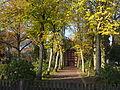 Friedhof Hermannsburg 01.JPG