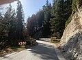 GER — BY — Landkreis Garmisch-Partenkirchen — Gemeinde Wallgau (Mautstraße Wallgau ↔ Vorderriß, etwa mittig).jpg