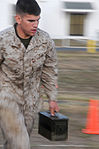 GTMO Marines, Sailors, and Soldiers Perform a Combat Fitness Test DVIDS311068.jpg
